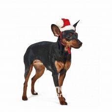 Ковпак новорічний Pet Fashion